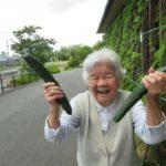 夏野菜を収穫♪【ココカラ】