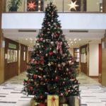 ☆クリスマスツリー☆を飾りました♪