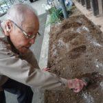 キャベツと白菜の苗を植えました!【通所介護事業所ココカラ】